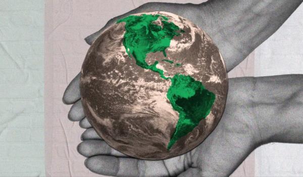 Mais do que sustentável, futuro será regenerativo no pós-covid, diz report da WT